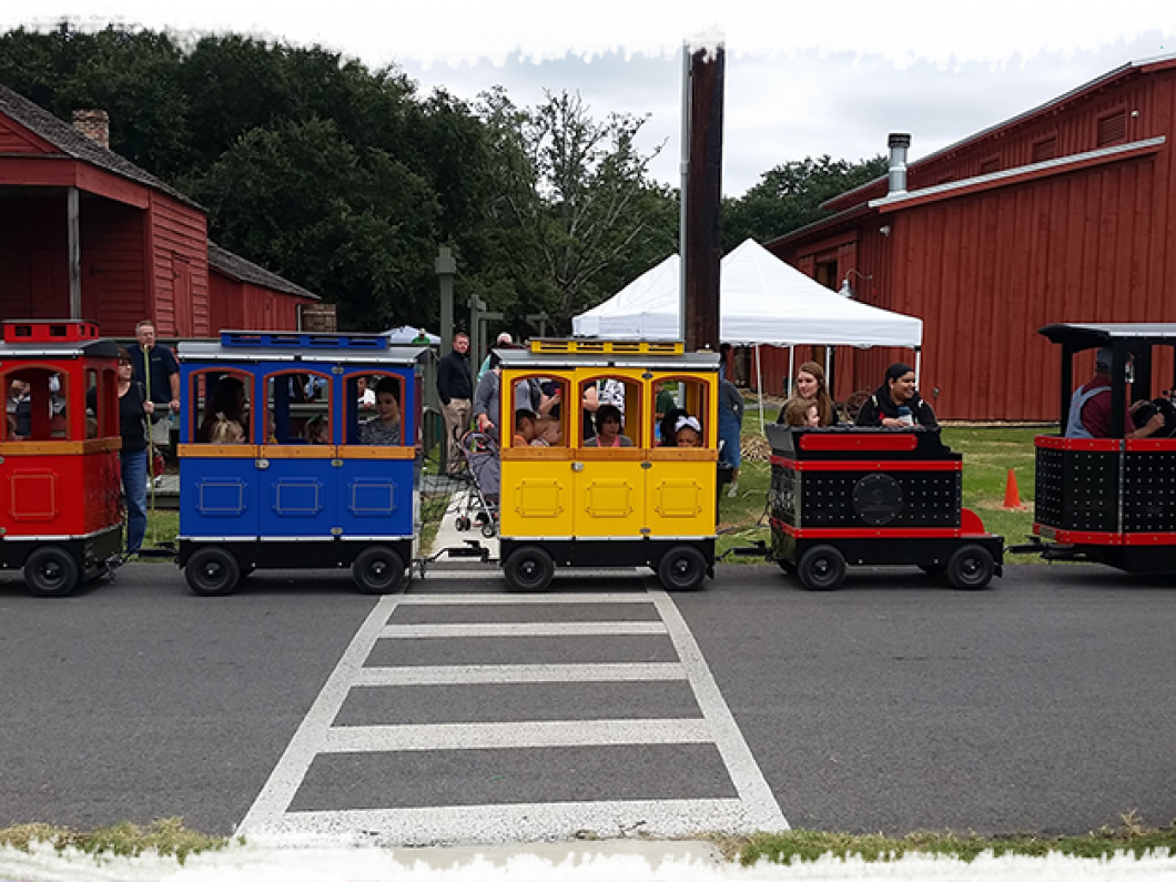 Train and carousel functions include bringing on site for: